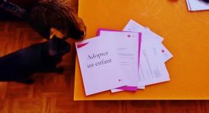 Dossier Adoption Titane et Karma